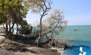 Praia em Santa Marta